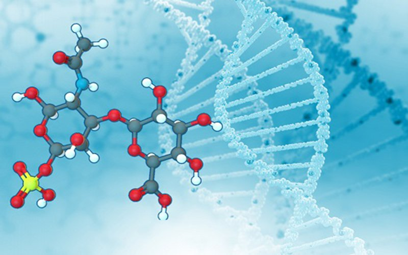 chondroitin-nano-x-khop